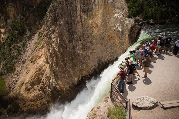Just Back: Yellowstone National Park