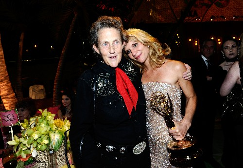 Temple Grandin, Killing Them Softly at Slaughterhouses for 30 Years