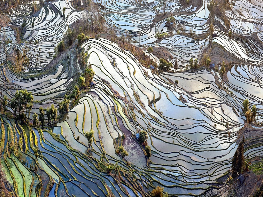 Rice Terrace Picture -- China Photo -- National Geographic Photo of the Day