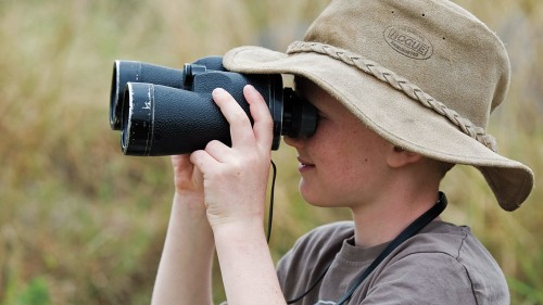 Getting Started as a Birder