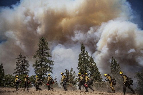 Pictures: Battling the Yosemite Rim Fire