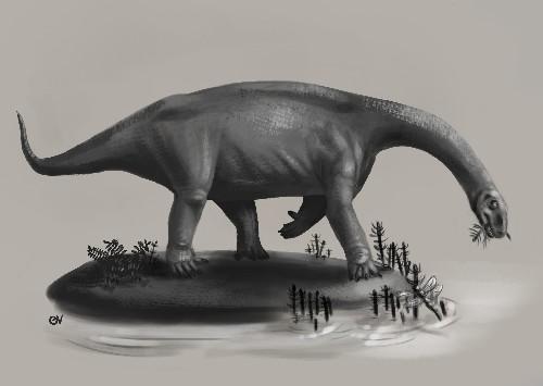 Paleo Profile: Pulanesaura eocollum