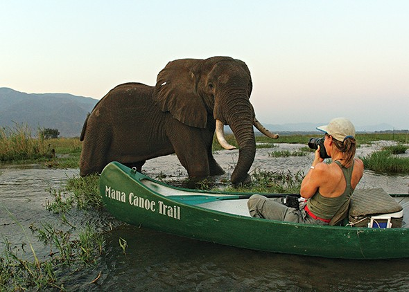Why Conservation Tourism Matters