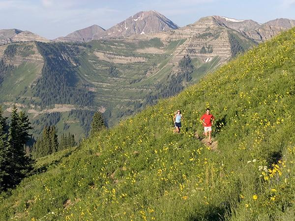 Colorado: Hike High