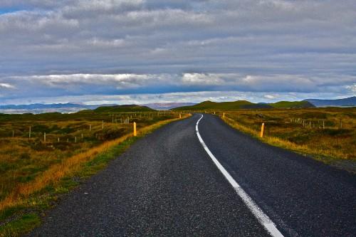Follow the Curious Traveler's Road to Wellness