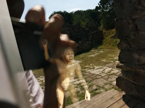Did Chucking Stones Make Us More Human?
