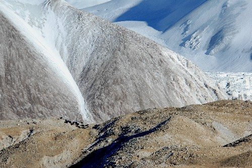 Yaks May Be Climbing Higher Due to Climate Change