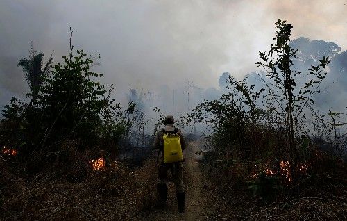 See how much of the Amazon is burning, how it compares to other years