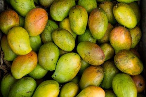 Kenyan Farmers Fight Food Loss By Drying, Selling Mangoes