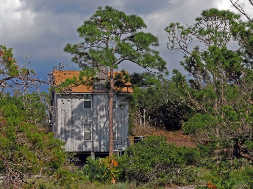 Florida by Land: Camp in the Wild