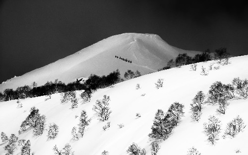 Your Japan Skiing Adventure Photos