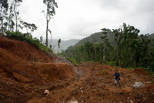 Logging is corrupting these islands. One village fights back—and wins.