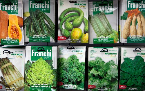 Selling Spring Dreams: The Evolution of Seed Catalogs