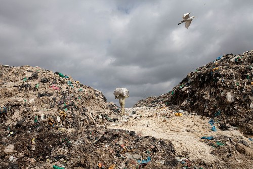 Plastic bag bans are spreading. But are they truly effective?