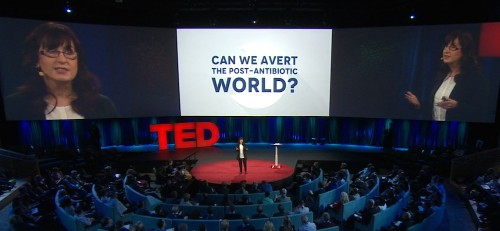 What Do We Do When Antibiotics Don't Work Anymore? (My TED Talk)