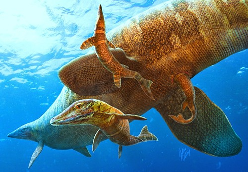 Baby Mosasaurs Were Born Out at Sea