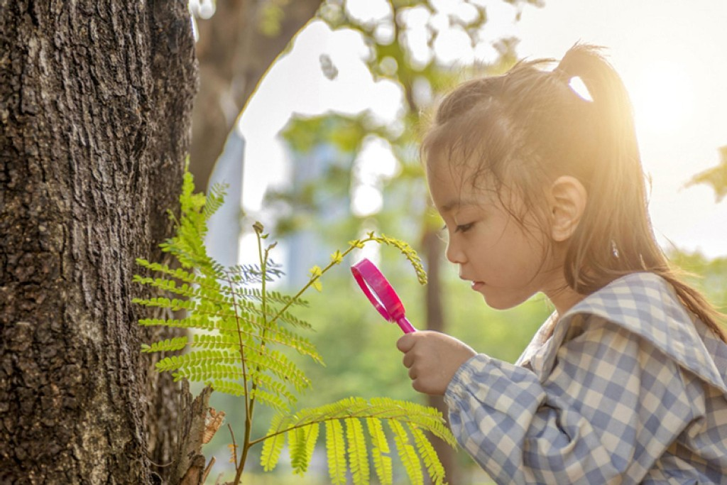 Worried about a coronavirus summer slump? Boost kids' brainpower with nature.
