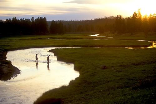 Best National Park Adventures for Kids