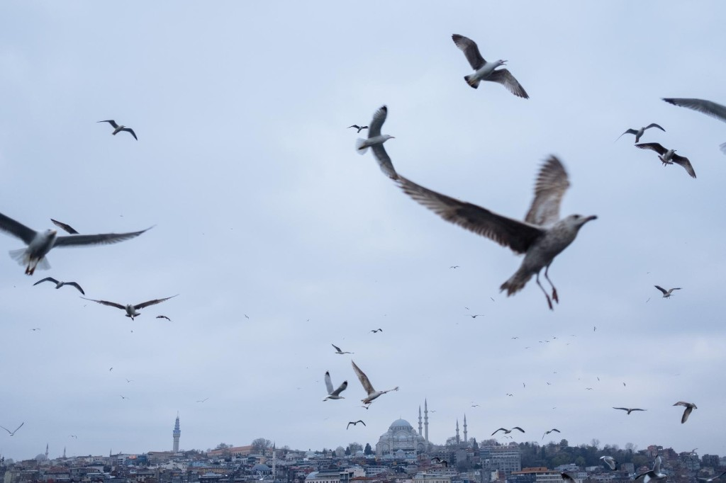 'Ghostly and melancholic': Bustling Istanbul is muted by quarantine