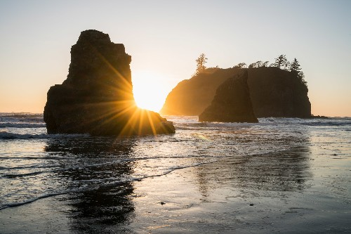 Everything to know about Olympic National Park