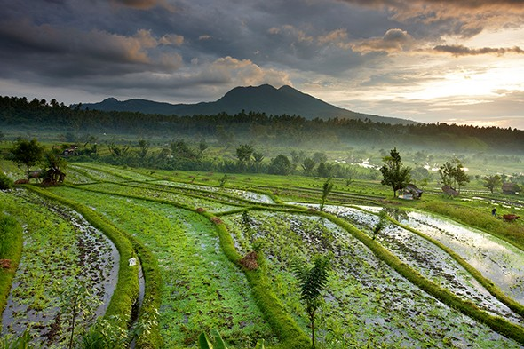 The Best Travel Books About Bali