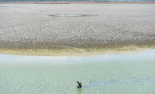 India's water crisis could be helped by better building, planning