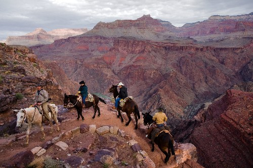 What to do at Grand Canyon National Park