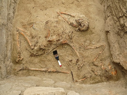 Ancient Tomb of Chimú Nobles Found in Peru