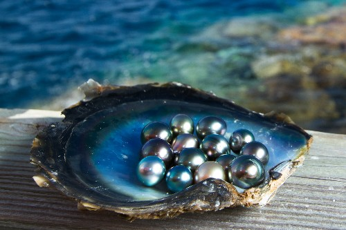 The Rise of Eco-Friendly Pearl Farming