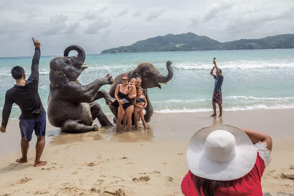 Suffering unseen: The dark truth behind wildlife tourism