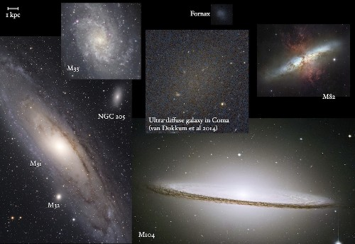 47 Mysterious, Milky Way-Size Galaxies Spotted in Faraway Cluster