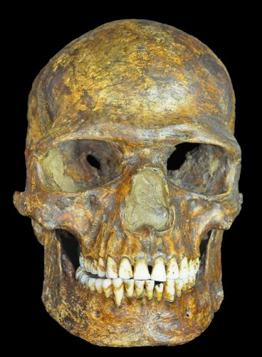 Europe Was a Melting Pot From the Start, Ancient DNA Reveals