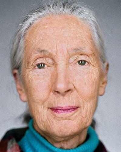 Jane Goodall on Why We Should Help the Serengeti