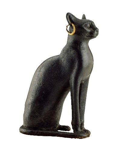 How Egypt's ancient city of divine cats was rediscovered