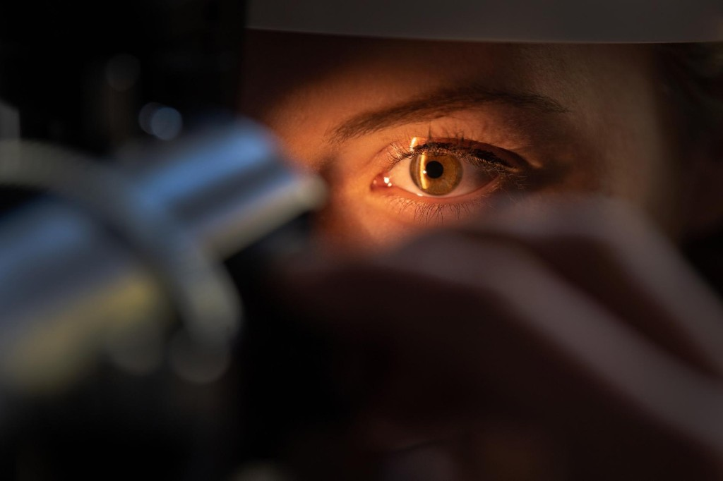 These scientists set out to end blindness. Their innovations just won them $3 million.