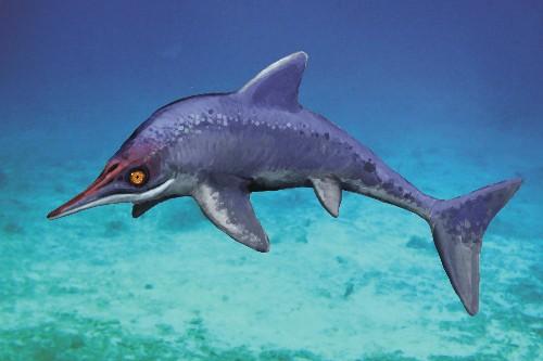 New Sea Monster Found, Rewrites Evolution?