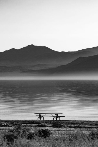 Isolated At The Salton Sea Photo by Denisevasquez V. — National Geographic Your Shot