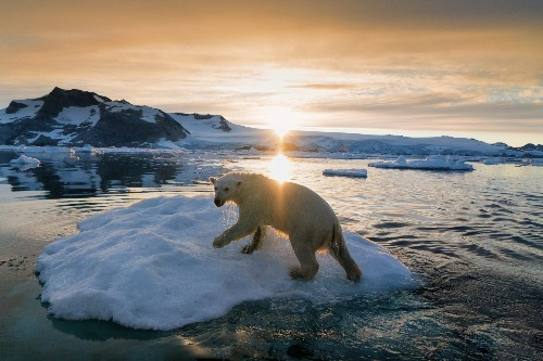 22 awe-inspiring images of icy adventures in Greenland