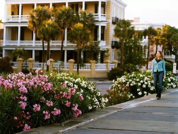 Road Trip: Low Country, South Carolina and Georgia