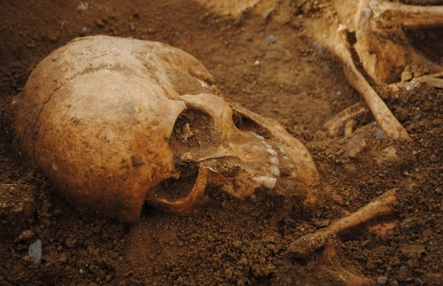 Skeletons Reveal Tuscan Life in the Time of Cholera