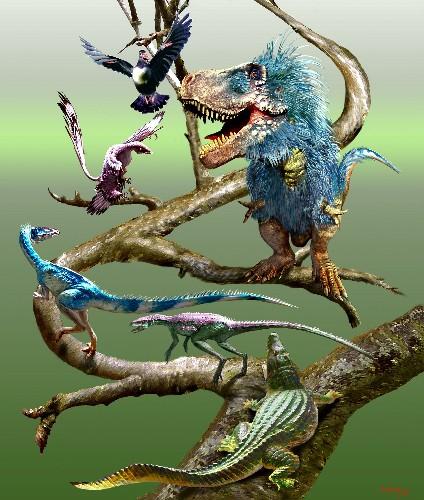 """Birds' """"Crouching"""" Gait Born in Dinosaur Ancestors"""