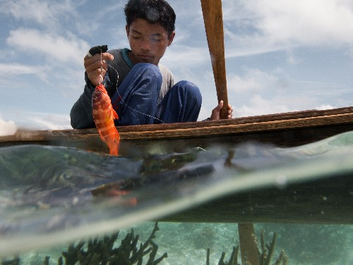 In Borneo, Eating Means Living the Life Aquatic