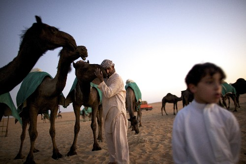 The Camels and the Contagion