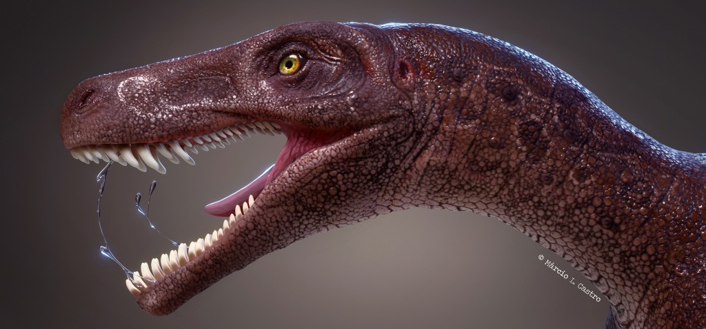 Paleontology and Stuff - cover