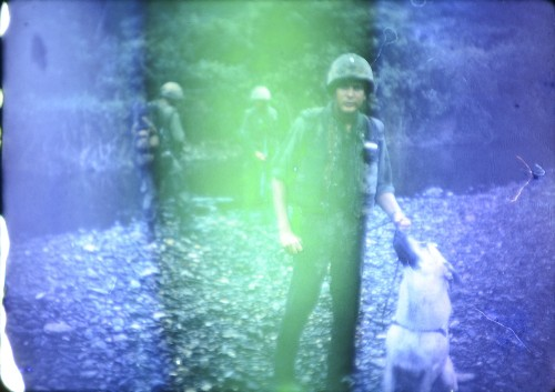 Dogs at War: Left Behind in Vietnam