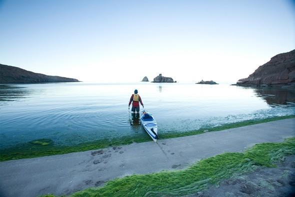 Adventure 101: Sea Kayaking Baja