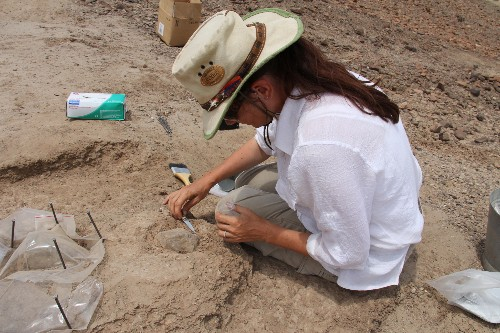 Wrong Turn Leads to Discovery of Oldest Stone Tools