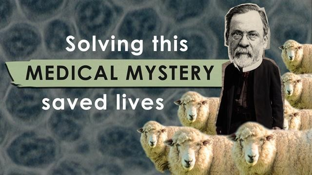 How solving this medical mystery saved lives