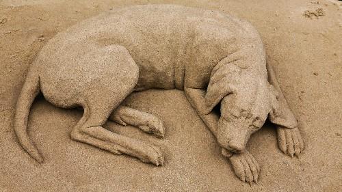 Wacky Weekend: Sand Sculptures