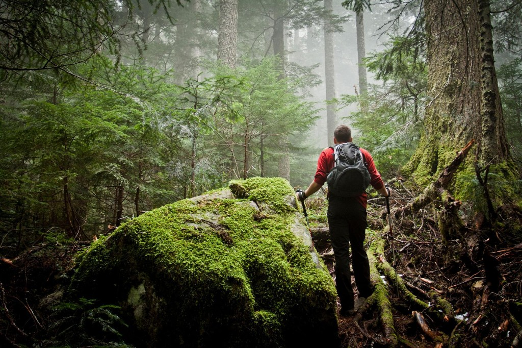 Day hikers are the most vulnerable in survival situations. Here's why.